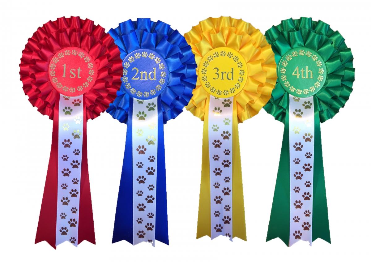 sliver and bronze rosettes 1st-3rd 2 tier MEDIUM SHOW SET 10x Gold