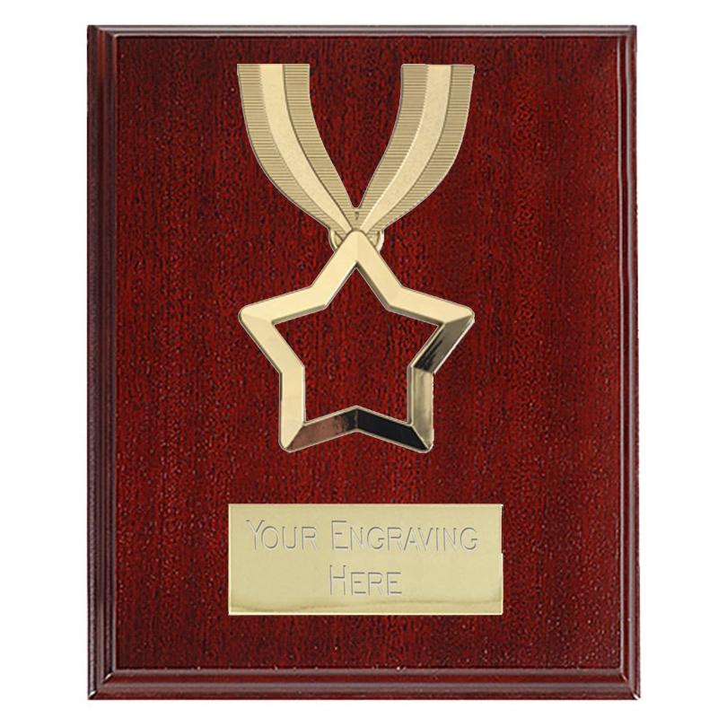 8cm Mini Star Wooden Spoon Trophy Award free engraving /& p/&p