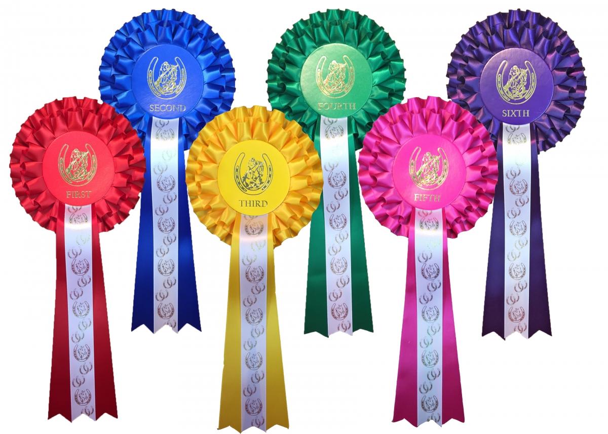 4th Place 2 étages Rosettes Horse Show Gymkhana Poney Party 1st